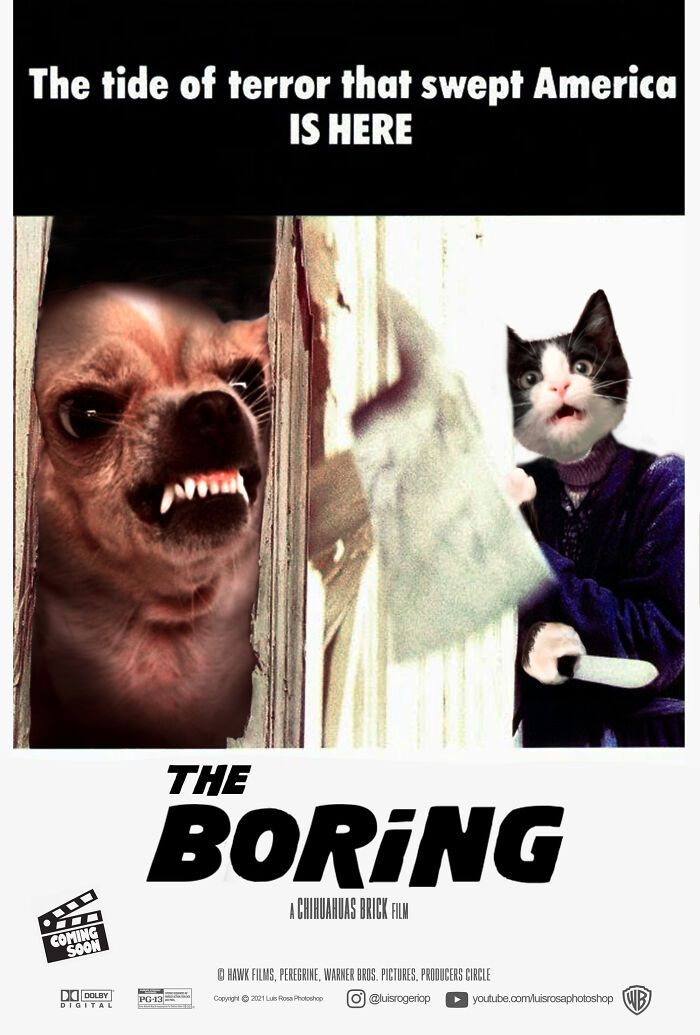 Artista recria pôsteres de filmes e substitui atores por gatos e cães (19 fotos) 13