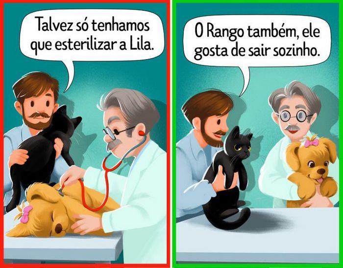 9 curiosidades sobre castração de cachorros e gatos 3