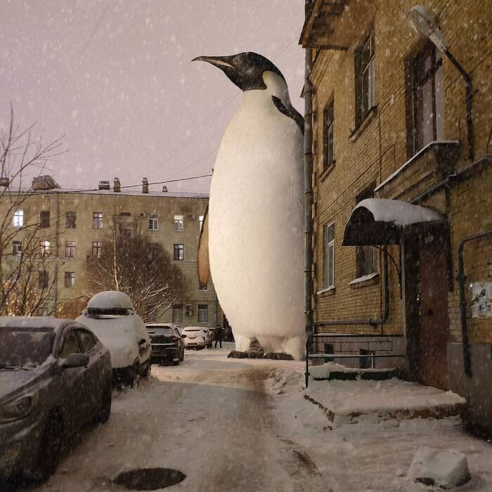 30 montagem de fotos inesperadas com animais gigantes por Vadim Solovyev 3