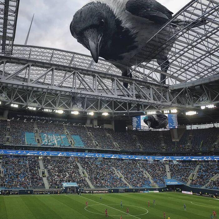 30 montagem de fotos inesperadas com animais gigantes por Vadim Solovyev 13