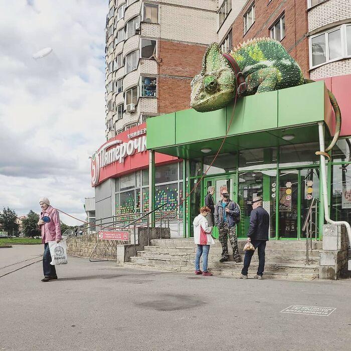 30 montagem de fotos inesperadas com animais gigantes por Vadim Solovyev 15