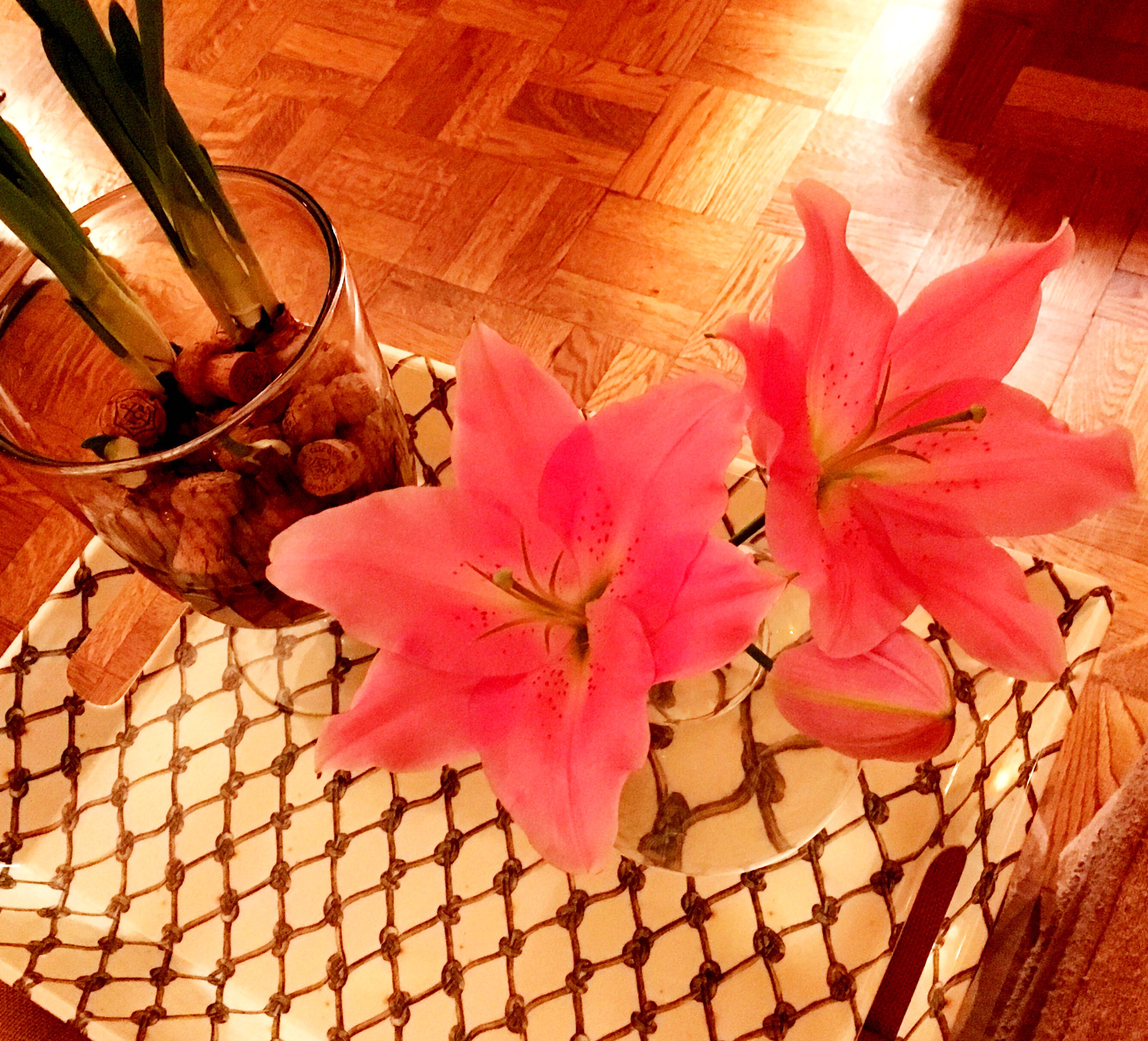 A lily flower friday ted kennedy watson i dotted them about the rooms in single stem vases to spread the love around thought they had a lovely flower friday vibe to them as we head into the izmirmasajfo