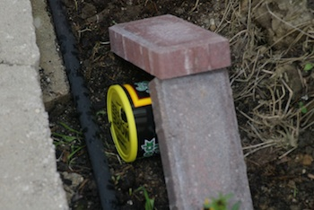 The first bumble bee nest box in place, with bricks to hold it down.