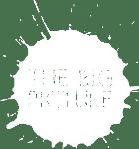 big pic logo