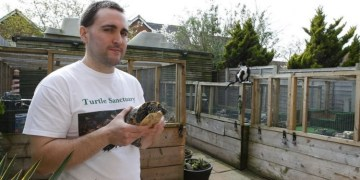 Help this TMNT fan save thousands of turtles in his Turtle Sanctuary. Image Source: KentOnline.co.uk