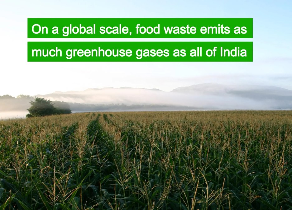 Food waste is responsible for greenhouse emissions