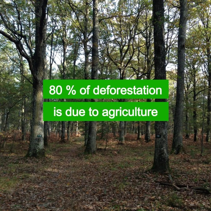 We deforestate land for agriculture