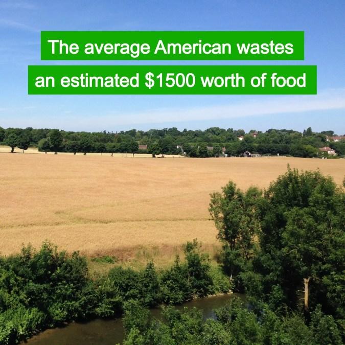 Throwing away food is throwing away money