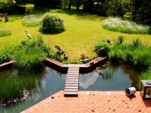 terrasse am teich terrassenteich anlegen ⇒ infos und praktische tipps vom