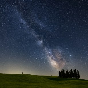 Milky Way Cypresses