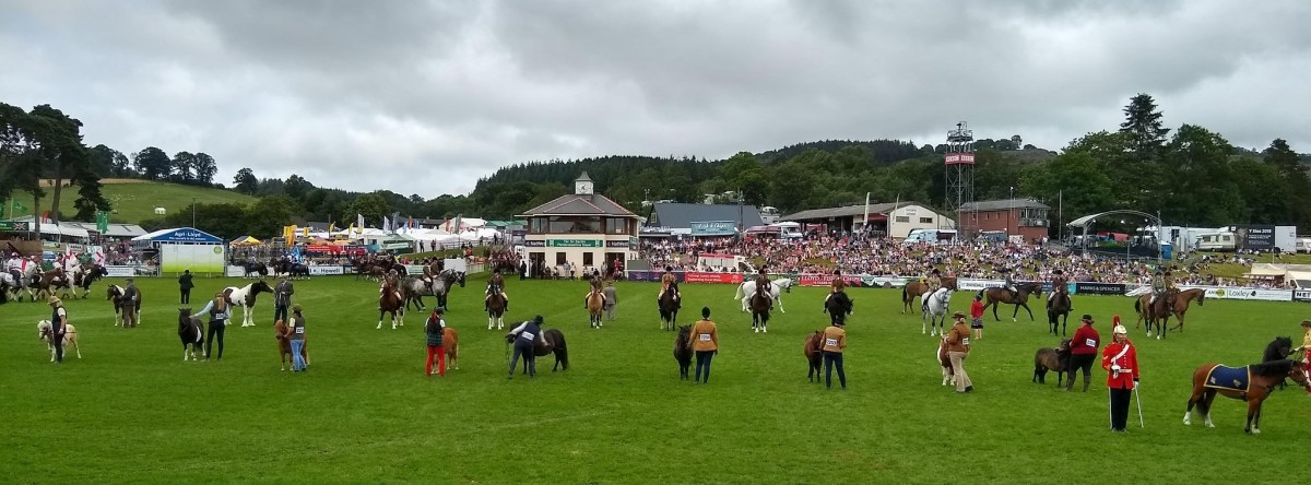 The Royal Welsh