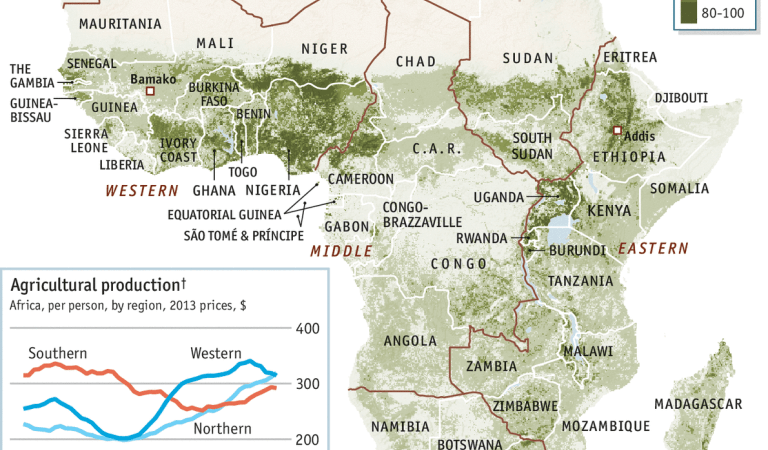 Africa's cropland density; Nigeria doing fairly well [map]
