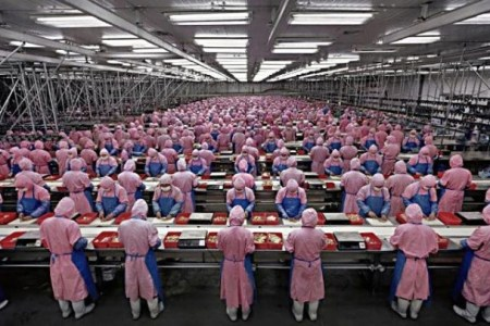 Apple Supplier, Foxconn, to Set Up $1 Billion Factory in India As Tech Exodus Looms in China