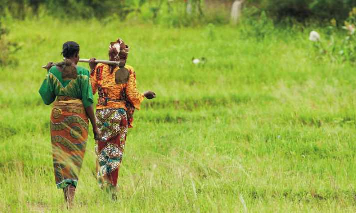 USAID and Partner Invest $1.8 million to help African Farmers
