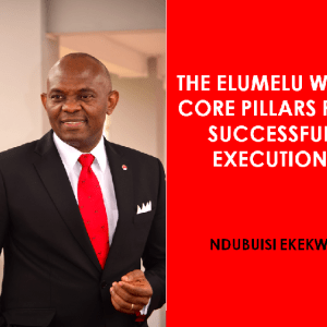 The Elumelu Way: Core Pillars for Successful Execution [Video]