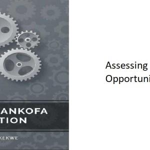 8.0 – Assessing Africa's Opportunities