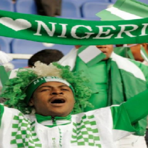 The Precious 30 Million Nigerians