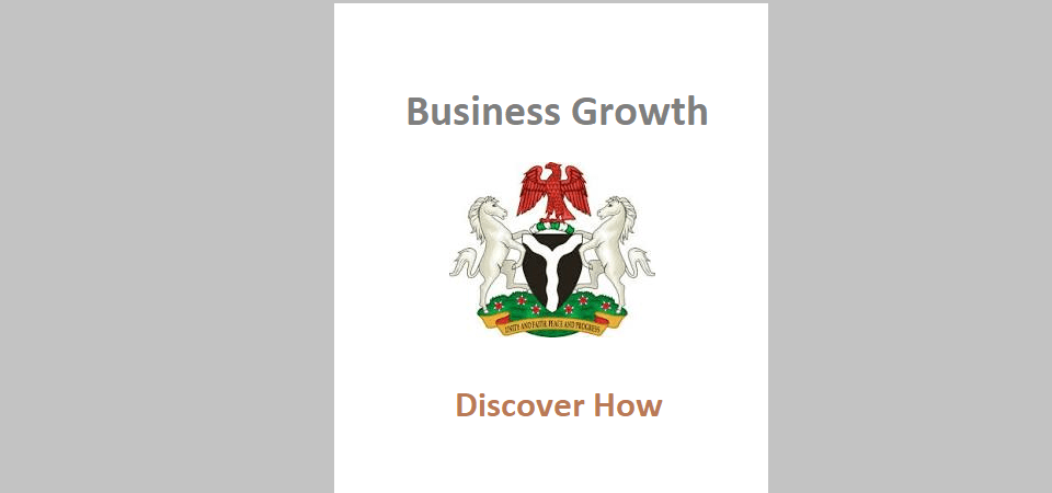 Business Growth: What We're Doing in Nigerian SMEs, Startups and Big Firms