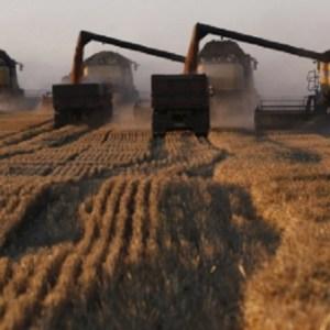 The Modern Farmers – Farm Robots