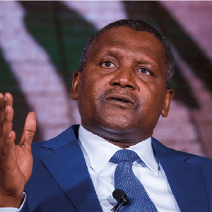 Nigerian Capital Market – Lessons from Dangote and Dangote Flour Mills Plc