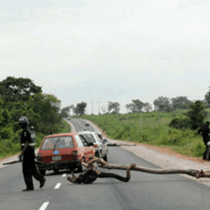 The Menace of Nigerian Police Road Blocks