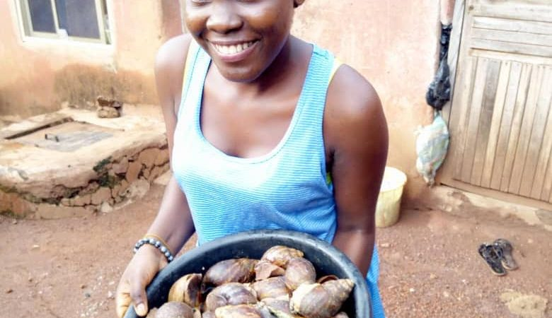 I Started With 8 Snails In A Bowl But Today I Have Over 5000 Snails. The Diary of an Entrepreneur – Joy Tope Akintan