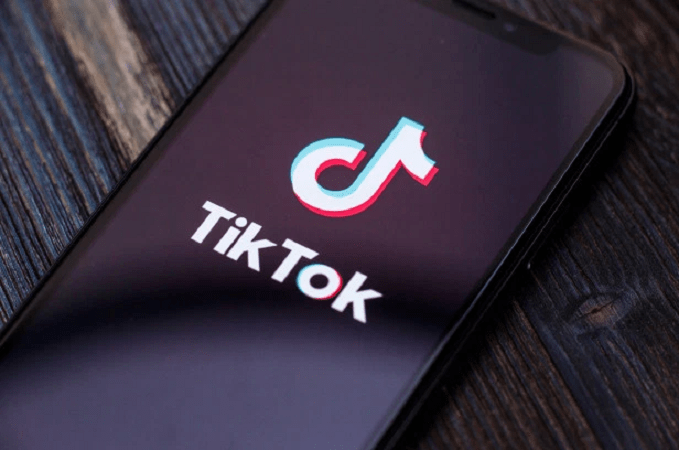 India Bans TikTok,  Offering Hope of Growth to Indigenous Apps