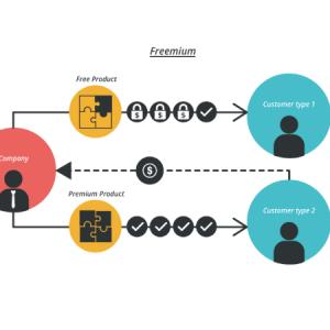 How to use Freemium Model to Unlock Value