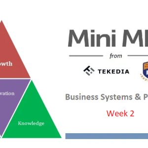 """Week 2 Session  """"Business Systems & Processes"""" Is Live  – Tekedia Mini-MBA"""
