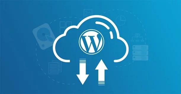 WordPress web sitemi yedeklemenin en kolay yolu nedir ? 2020