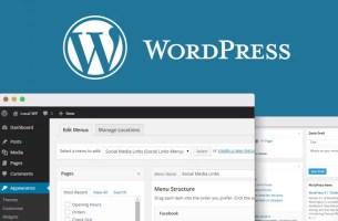 Wordpress-Blog-Sitesi-Kaldırma-ve-Silme-800x500