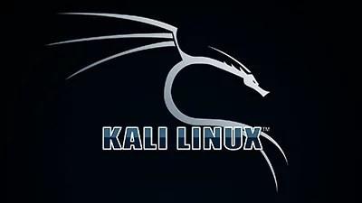 Kali Linux Süper Eğitim Seti İndir