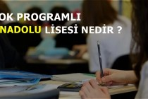 Çok Programlı Anadolu Lisesi Nedir ?