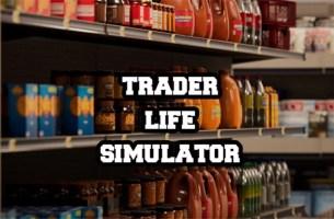 Trader Life Simulator Sistem Gereksinimleri