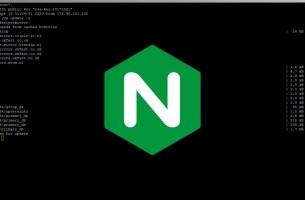 Nginx Windows'da Nasıl Kurulur ve Çalıştırılır