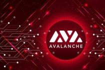 Avax Coin Geleceği
