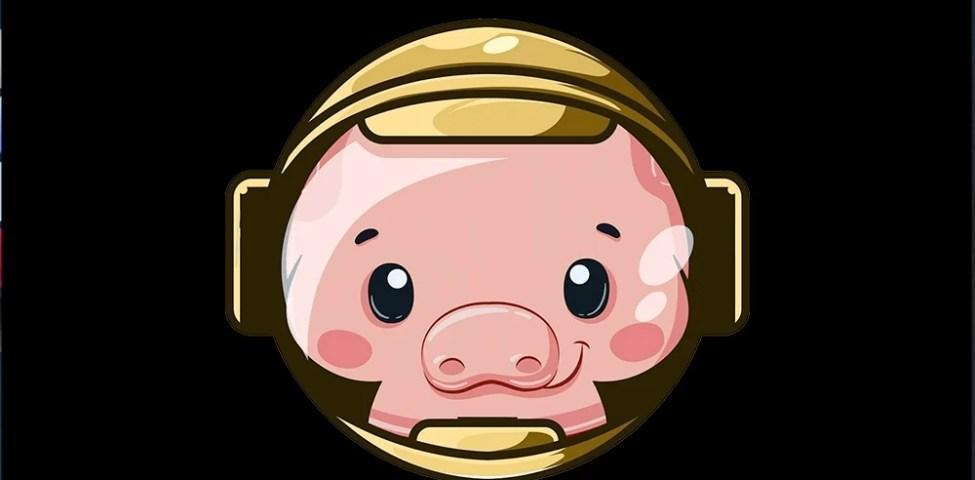 PİG Coin Nedir? Pig Coin Geleceği 2021