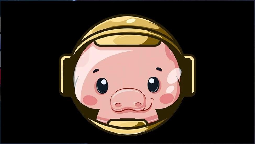 Pig Coin Geleceği