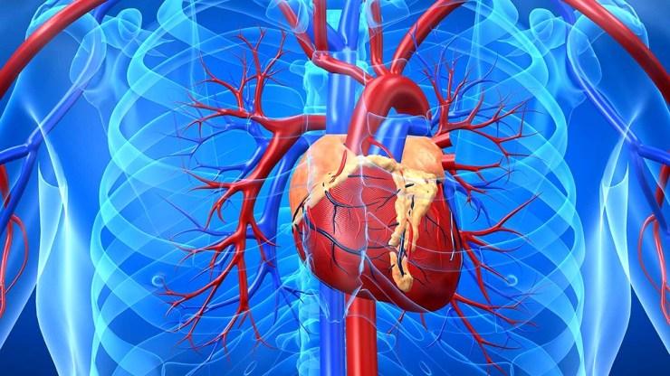 En Argentina el 38,8% de los hipertensos desconocen su enfermedad.