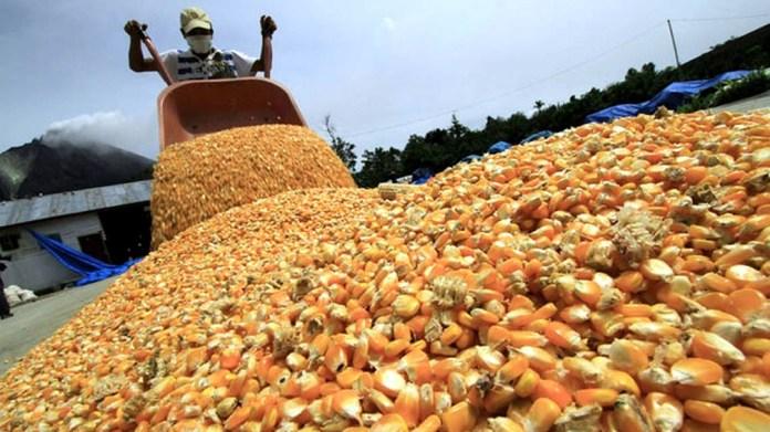 """El ministro habló de un """"diálogo permanente"""" con todos los actores del sector agropecuario."""