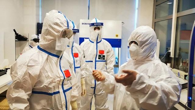 Buscan remontar hasta los orígenes de este virus e intentar saber cómo se transmitió al hombre.