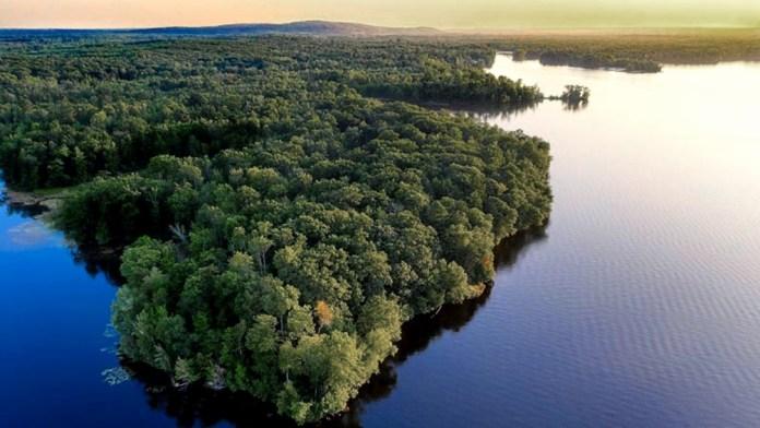 La Amazonia junto y el Gran Chaco Americano, ecosistemas en peligro.