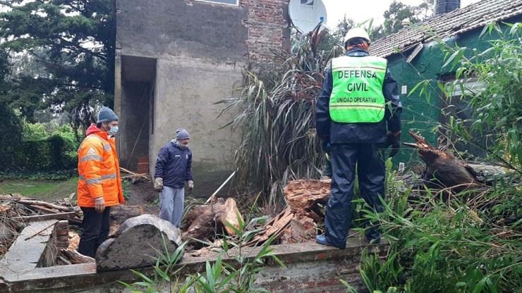 """""""un árbol caído en un asentamiento destrozó dos casas"""" Indicaron autoridades a Télam."""