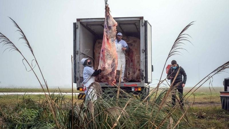 La Aduana estableció a lo largo de este año valores referenciales para la exportación de 28 cortes de carne bovina.