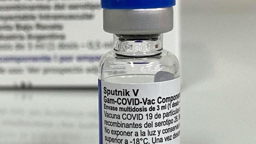 Putin recibió las dos dosis de la vacuna anticovid Sputnik V.