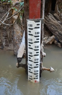 El hidrómetro registró en el puerto de la capital de Corrientes 0,29 metros, una altura que no se registra desde 1944.