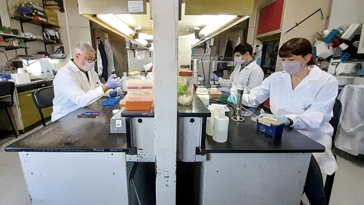 El proyecto recibió $ 60.000.000 de la Agencia Nacional de Promoción de la Investigación, el Desarrollo Tecnológico y la Innovación.