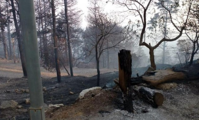 """""""Afortunadamente, no hubo heridos ni daños materiales sustanciales, más que cables y luminarias quemadas"""", detalló en diálogo con Télam."""