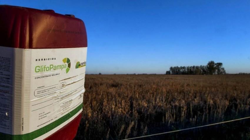 DeepAgro desarrolló SprAI, un sistema inteligente de detección de malezas que permite ahorrar hasta 70% el uso de agroquímicos.
