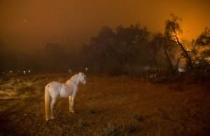 Cambiamenti climatici la grande sfida su National Geographic